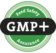 Logo-GMP-Plus